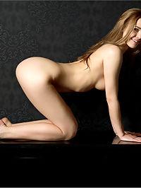 Carolina Seduction II