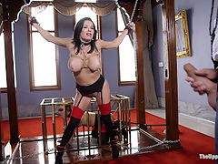 The Nymphomaniacs Anal Apprentice : The insatiable wonder that is our sex slave Veronica Avluv takes on her greatest apprentice yet The gorgeous Amara Romani. This shoot is all chemistry as Ramon Nomar takes hold of these two hot anal whores and enforces the lessons of the day How to beg for cock like a proper TUF slut slave, how to choke on cock and beg for more, how to endure painful punishment and bondage in service of sex, how to be double stuffed, how to squirt buckets on command and only on command, anally fisted, holes stuffed closed with hitachis and still degrading themselves on hard dick as they are flogged and begging to cum with true nympho lust.