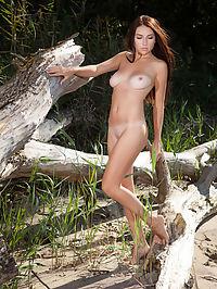 Beautiful : Niemira