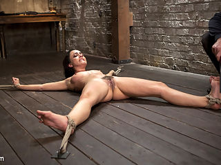 65 Minutes of Hell!! : Roxanne is known for being a little brat, especially to The Pope. Today she will be put to the ultimate test with a non-stop, no cuts, and no holds barred shoots. She is put in a spread eagle on the floor and for the next 65 minutes she is tormented with devastating brutality. The is not for the weak of heart, because this is as real as it gets domination. She is subjected to some of the most brutal torment ever to be seen on Hogtied.