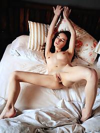 Bedmate : Debora A Bedmate by Arkisi