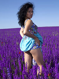 Lavender Dreams : Lavender Dreams featuring Maliko by Marlene